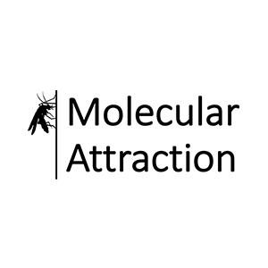 https://www.molecular-attraction.com/